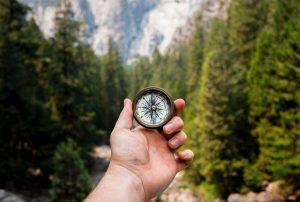 Hand hält einen Kompass und im Hintergrund ist Natur